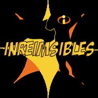 Logo Inreimsibles